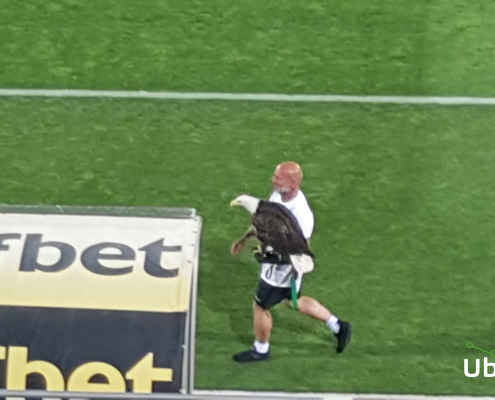 The Ludogorets eagle and trainer